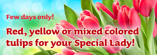 Few days only! Red, yellow or mixed colored tulips for your Special Lady!